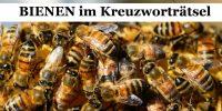 Bienen und Bienenprodukt im Kreuzwortraetsel